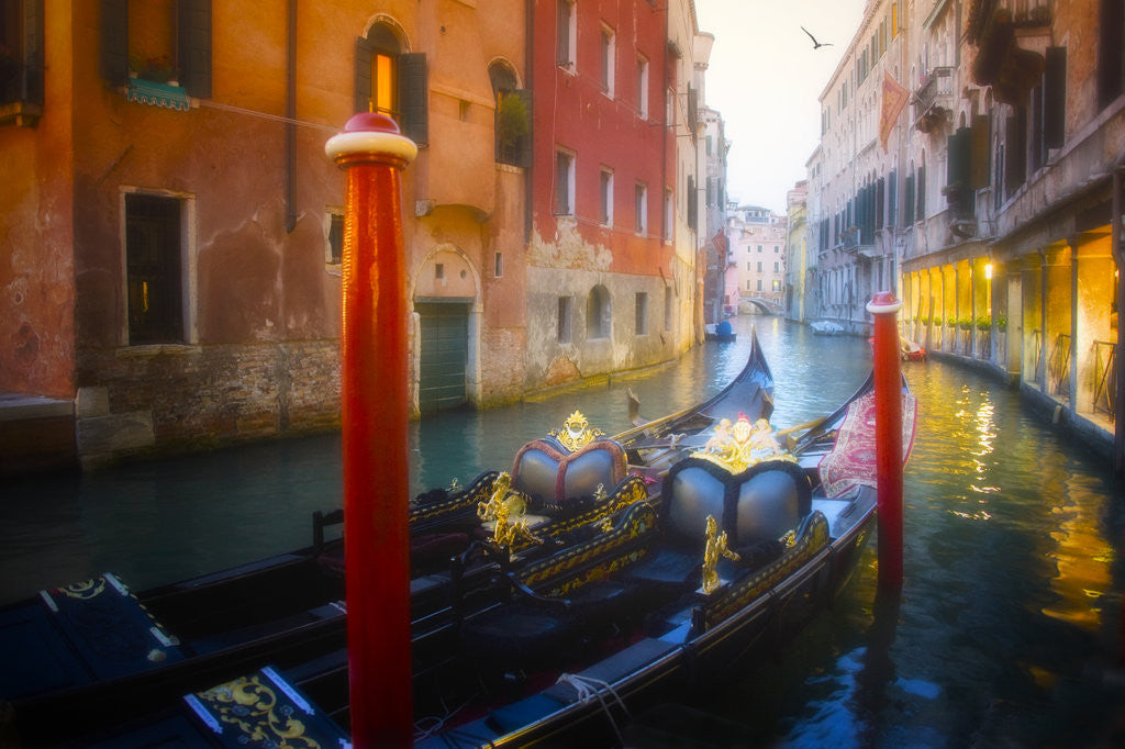 Detail of A Grand Ride, Venice by Dee Smart