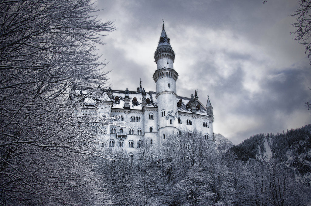 Detail of Neuschwanstein by Eugenia Kyriakopoulou