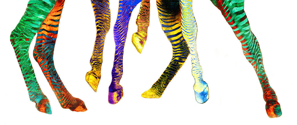 Detail of Zebra Rockettes by Dee Smart