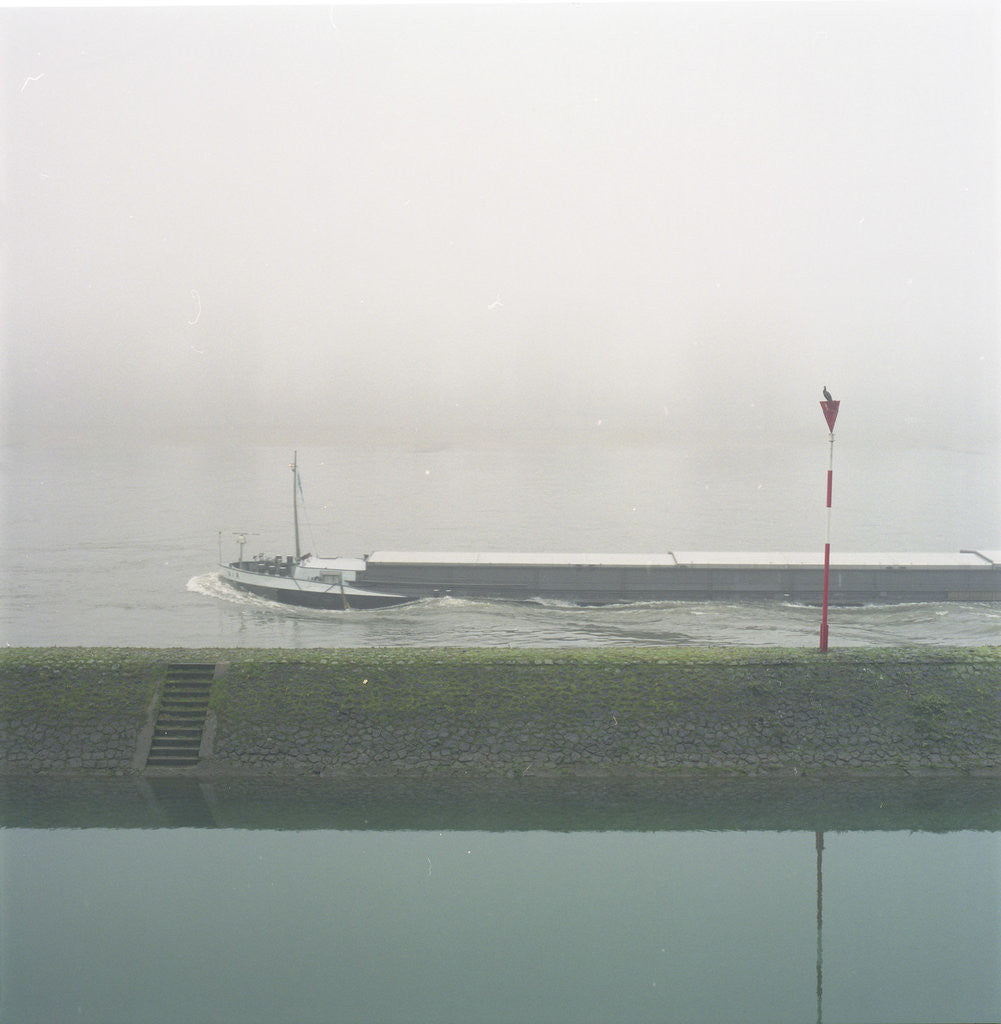 Detail of Fog in Dusseldorf 2 by Eva Sauer