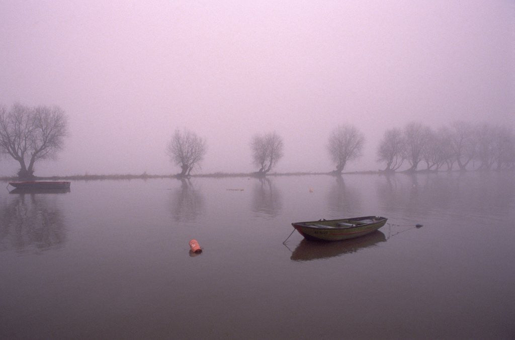 Mist Obsures Boat in The Rhine by Corbis