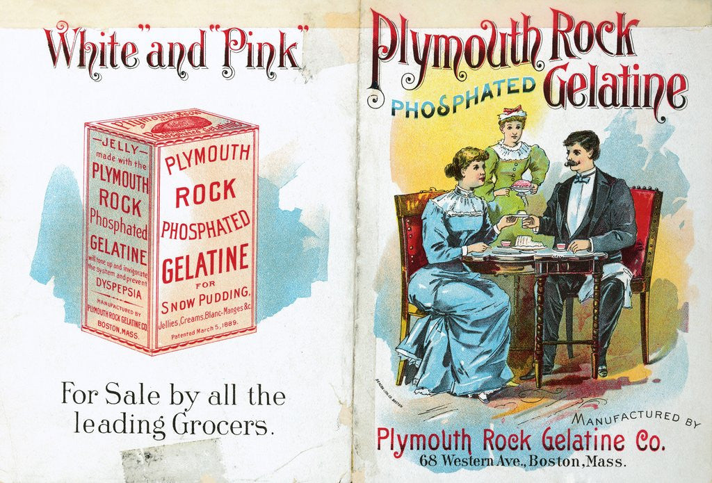 Detail of Advertisement for Plymouth Rock Phosphated Gelatine by Corbis