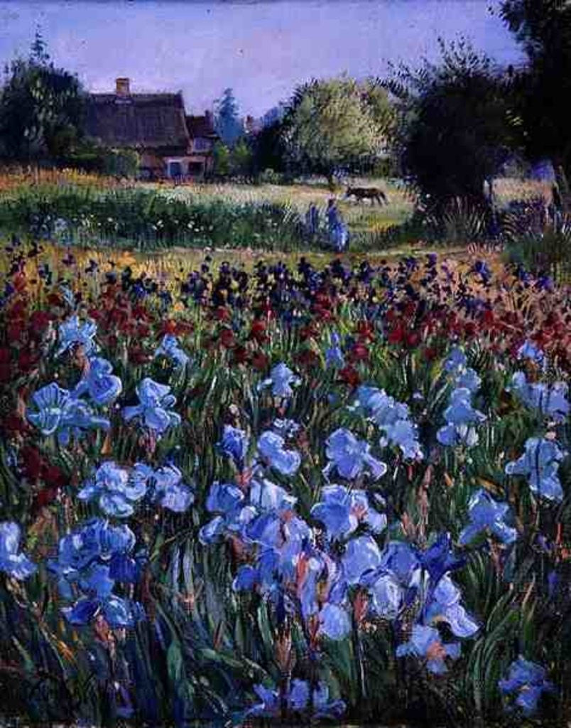 Detail of Entrance to Burgate Green by Timothy Easton
