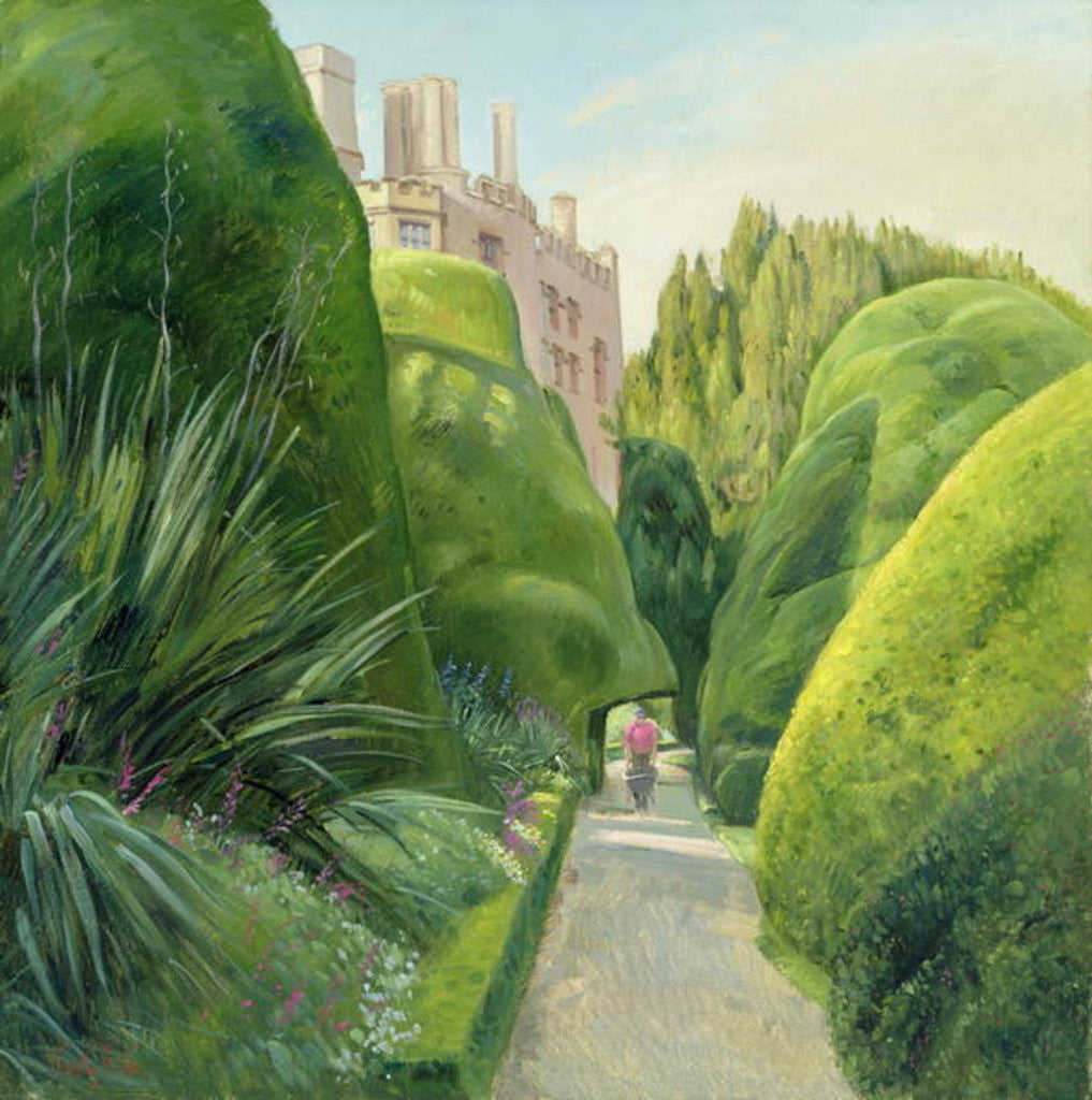 Detail of The Topiary Path, Powis Castle by Timothy Easton