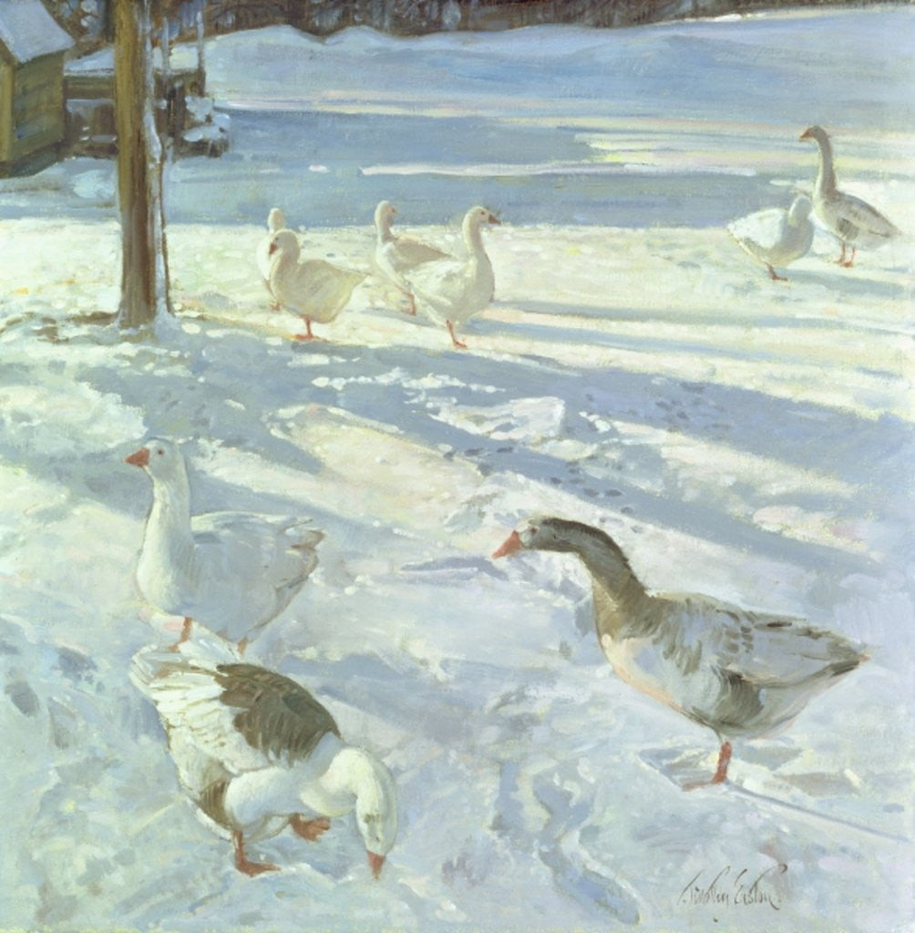 Detail of Snowfeeders by Timothy Easton