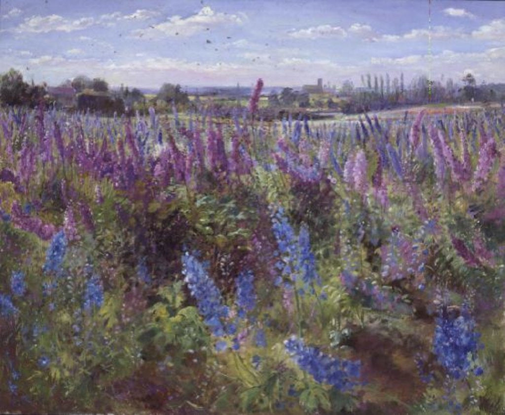 Detail of Delphinium Field and Church by Timothy Easton
