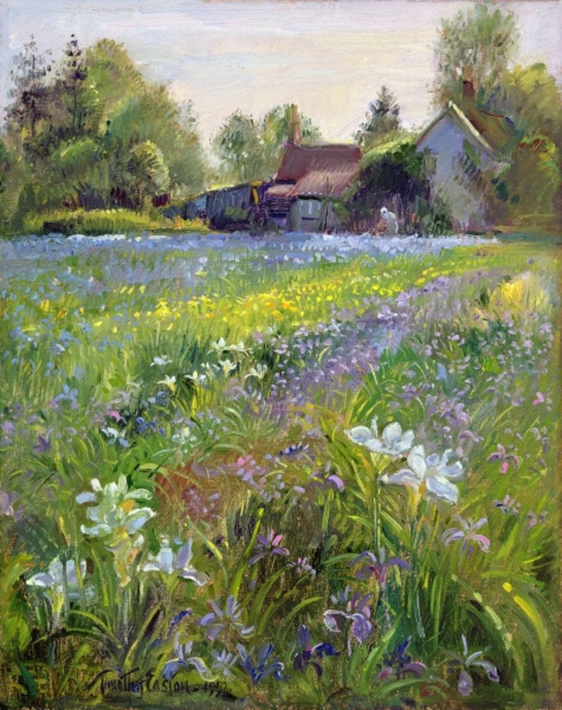 Detail of Dwarf Irises and Cottage by Timothy Easton