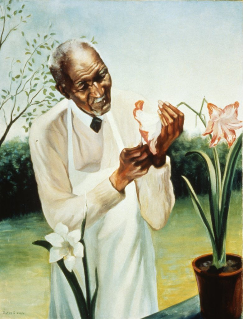 Detail of George Washington Carver by Corbis