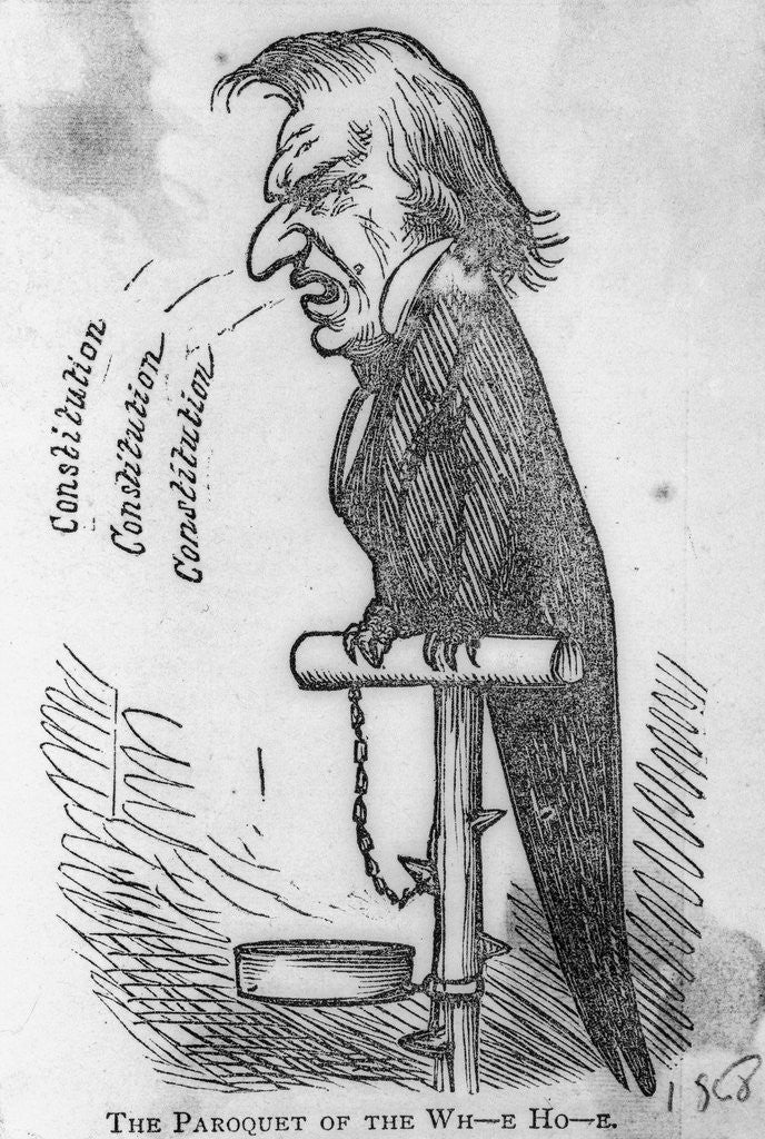 Detail of Cartoon of Andrew Johnson as Parrot by Corbis