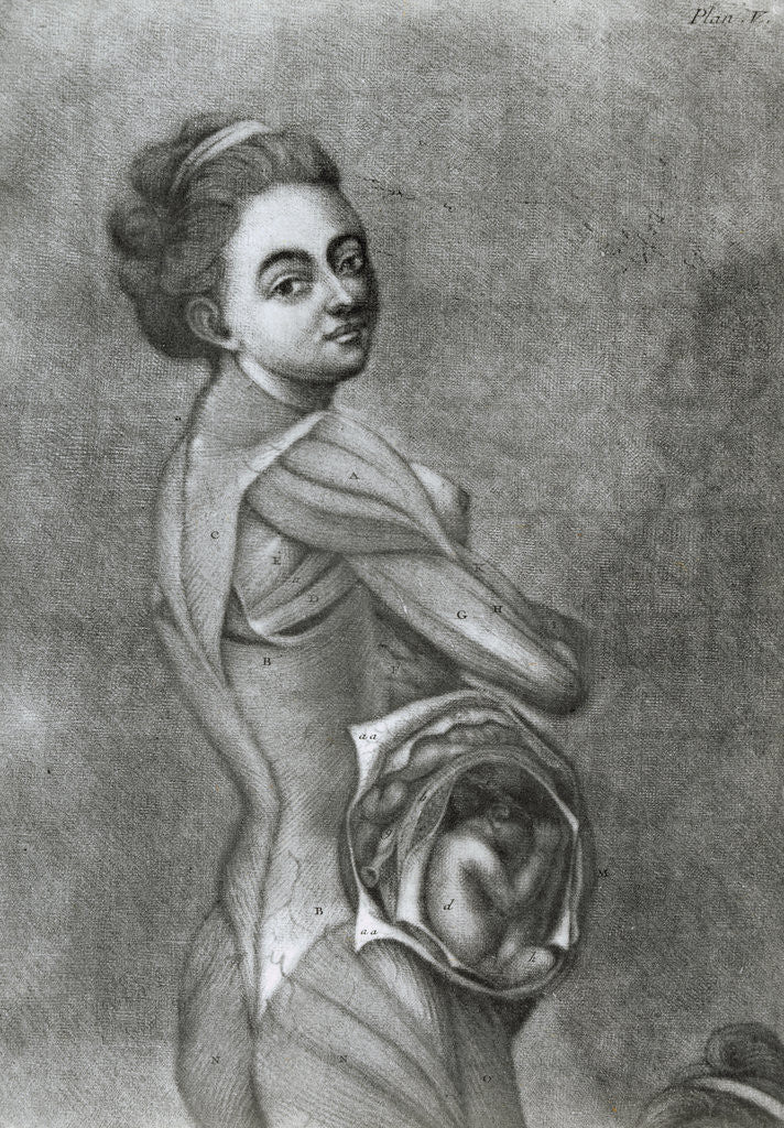 Detail of Illustration of Pregnant Woman by Corbis