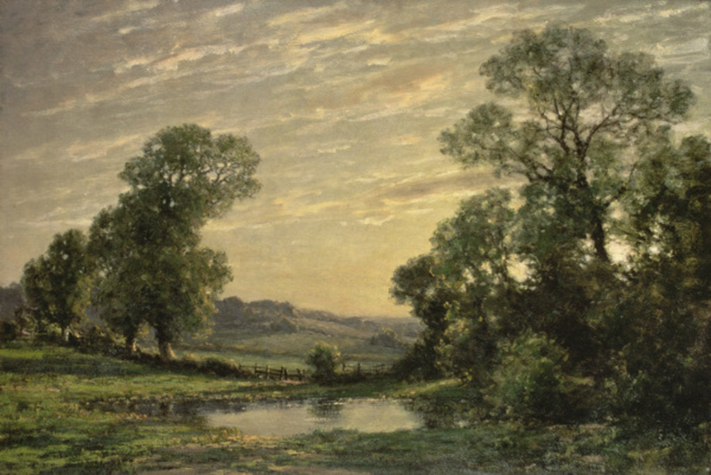 Landscape near Arundel, Sussex by Jose Weiss