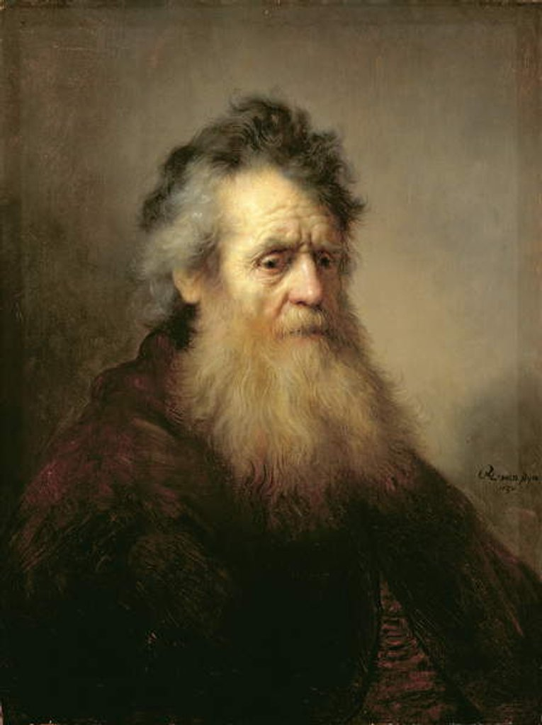 Portrait of a Old Man, 1632