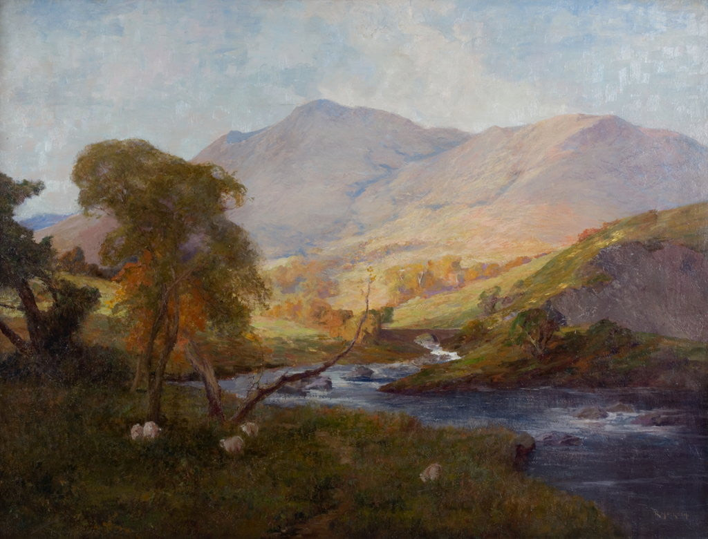 Detail of In Borrowdale by Richard Hesketh