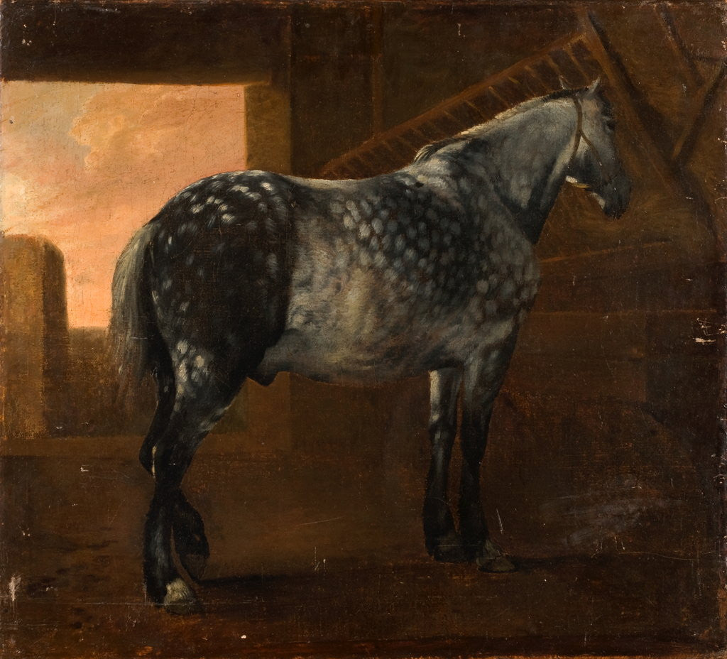 Detail of A Dapple Grey Horse by Aelbert Cuyp