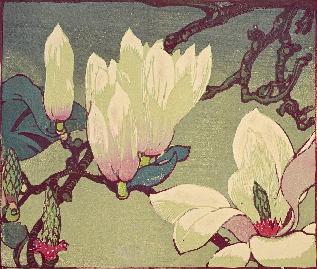Detail of Magnolia by Mabel Royds