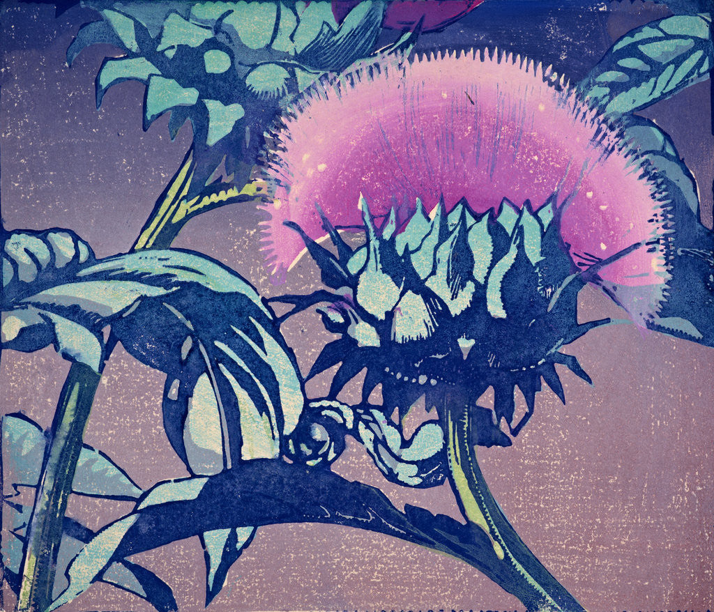 Detail of Artichoke by Mabel Royds