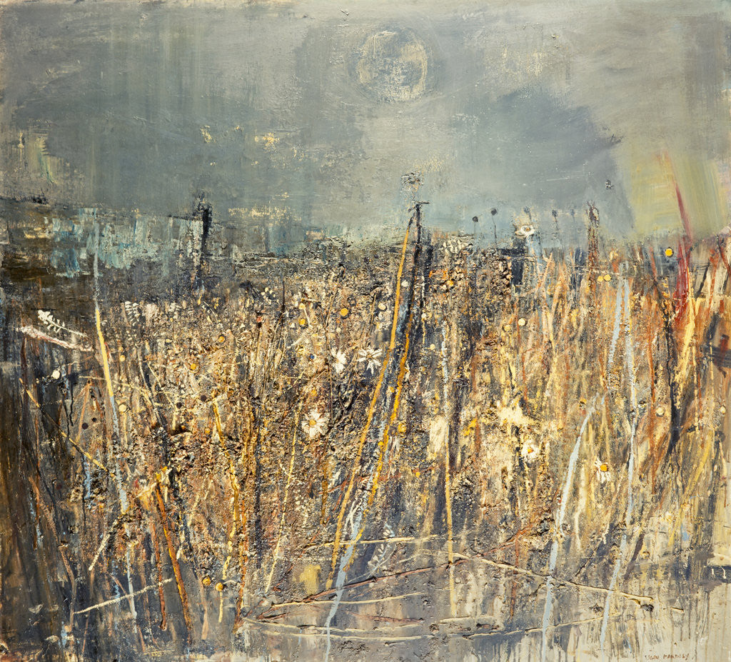 Detail of Seeded Grasses and Daisies, September by Joan Eardley