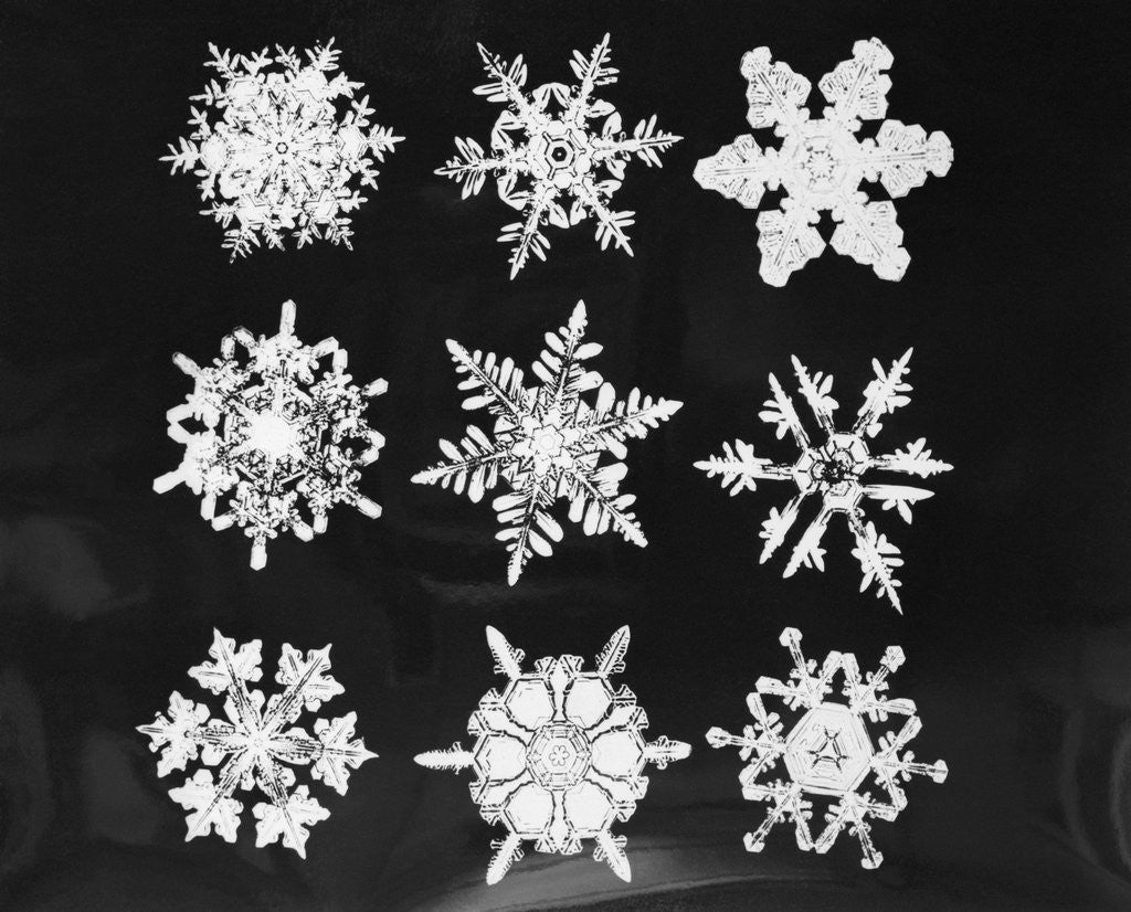 Detail of Assorted Snowflake Patterns by Corbis