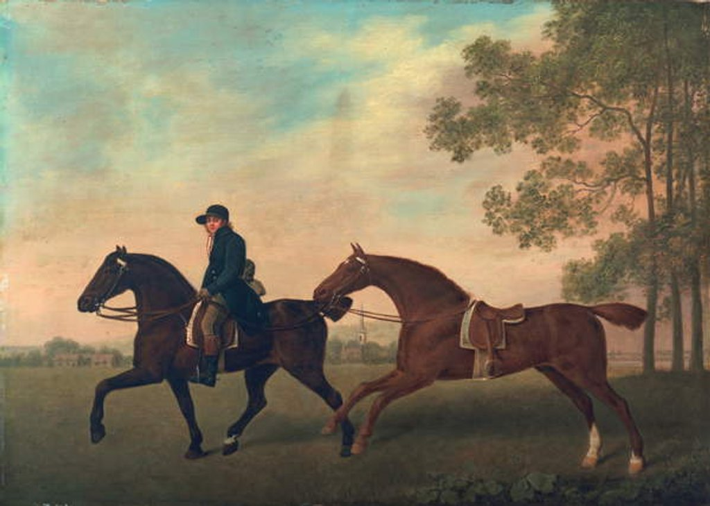 Detail of Two Hacks, 1789 by George Stubbs