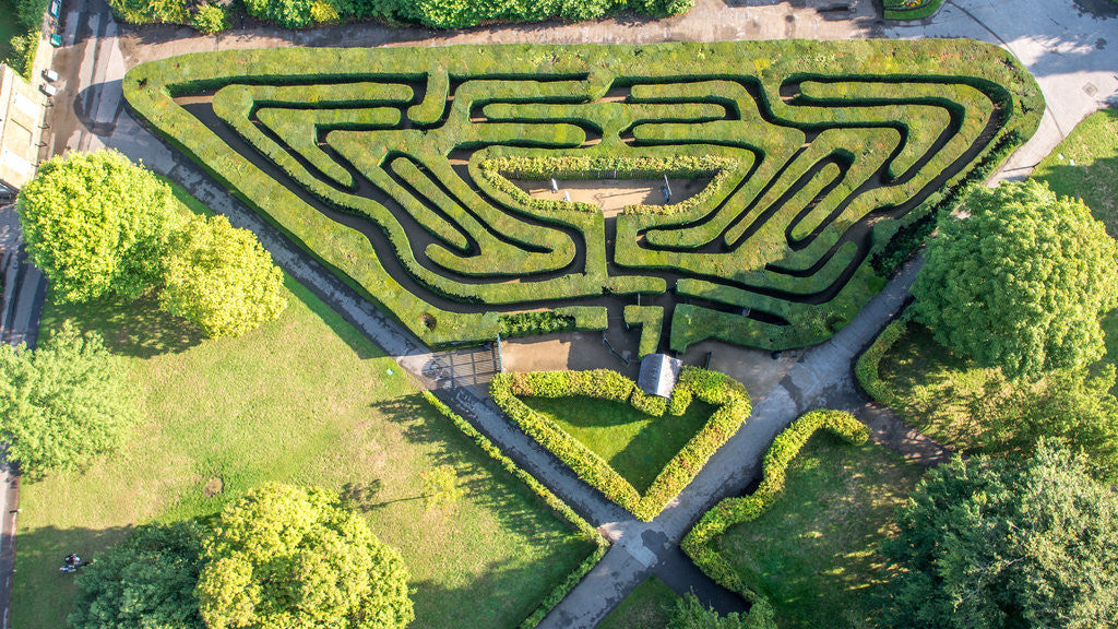 Detail of The Maze, Hampton Court Palace by Unknown