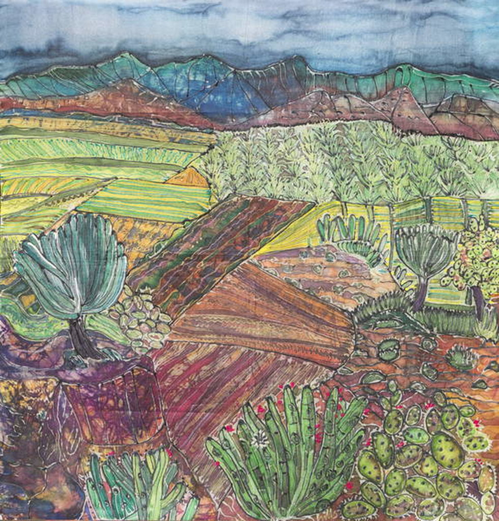 Detail of Oaxaca Landscape by Hilary Simon