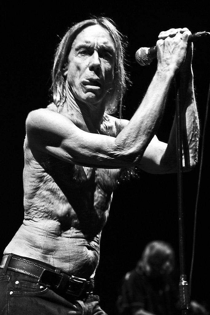 Detail of Iggy Pop and The Stooges (1) by Karen Toftera