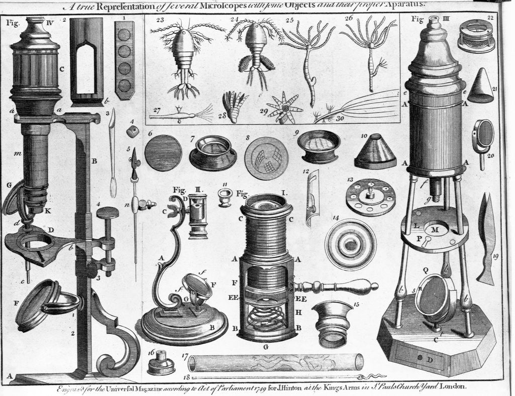 Detail of Eighteenth Century English Engraving Assorted Microscopes and Apparatus by Corbis