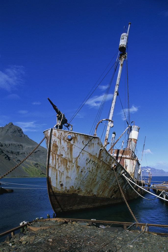 Detail of Abandoned Whaling Ship by Corbis