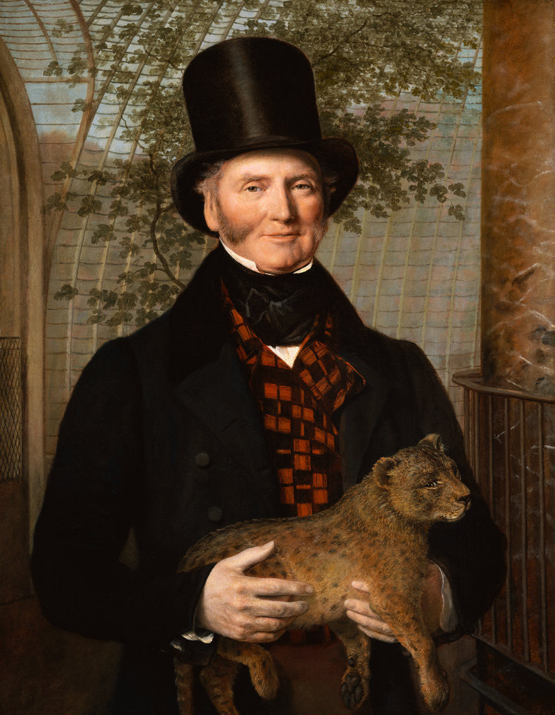 Detail of Portrait of Edward Cross Holding a Lion Cub by Jacques- Laurent Agasse