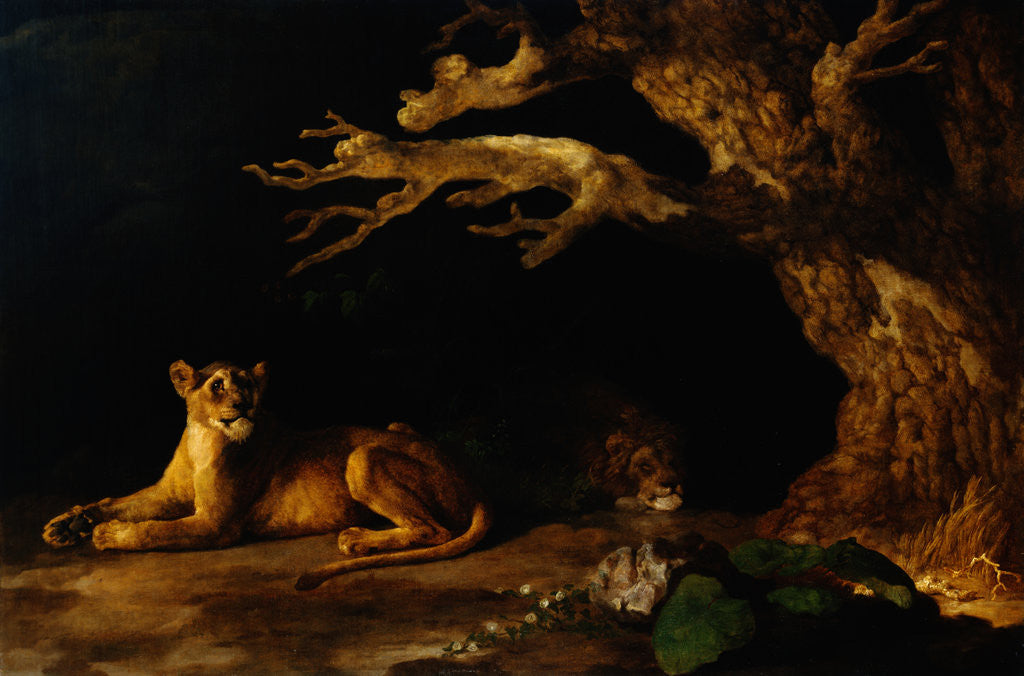 Detail of Lioness and Lion in a Cave by George Stubbs