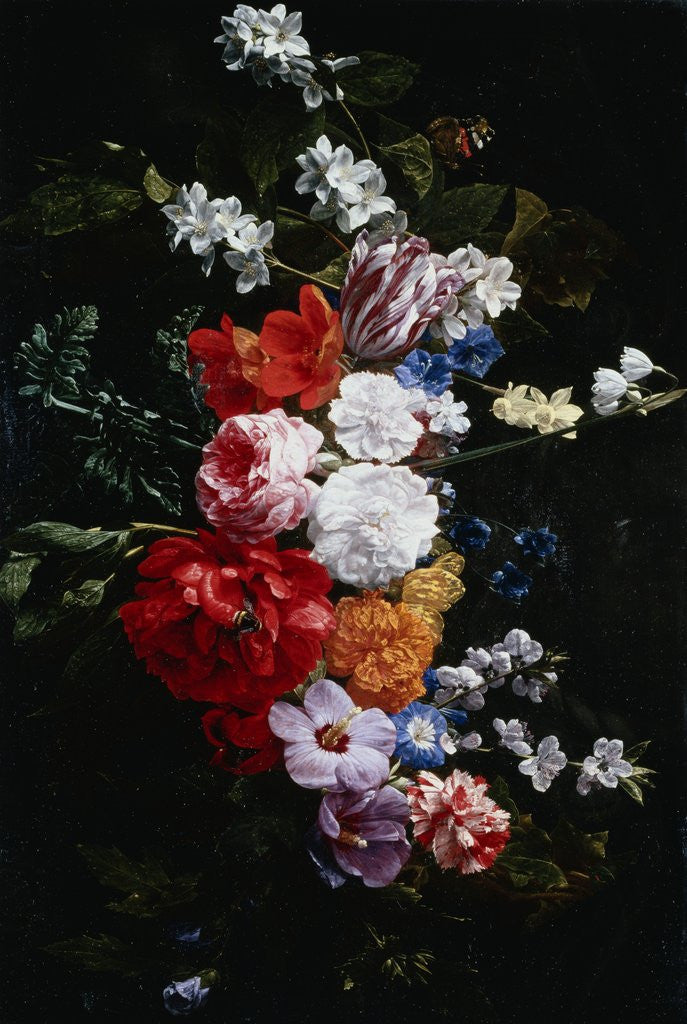 Detail of A Swag of Pink and White Roses by Nicolaes van Veerendael