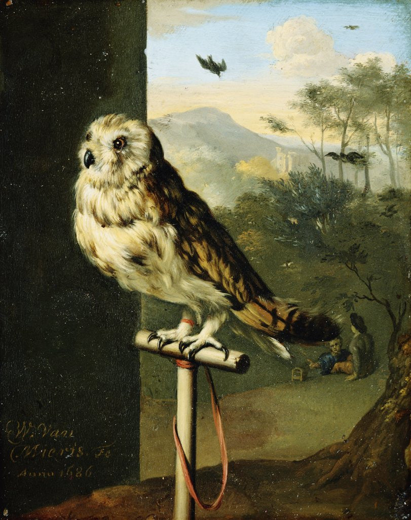 Detail of An Owl on a Perch by Willem van Mieris