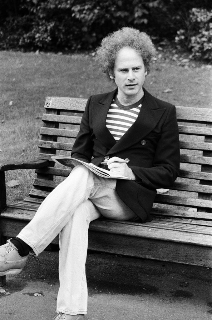 Detail of Art Garfunkel, 1975 by Eric Harlow