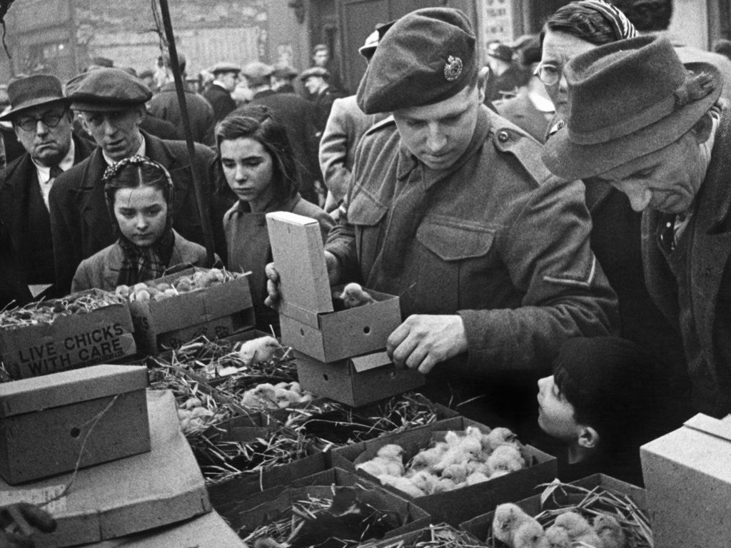 Detail of East London Small holders restocking sale. 18th February 1945 by MacLellan
