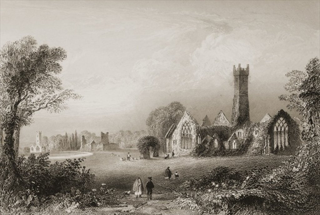 Detail of Augustinian Abbey at Adare, County Limerick, Ireland by William Henry Bartlett