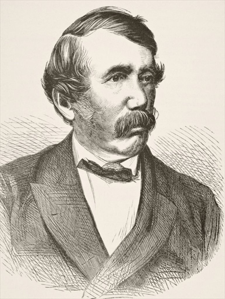 Detail of David Livingstone by English School