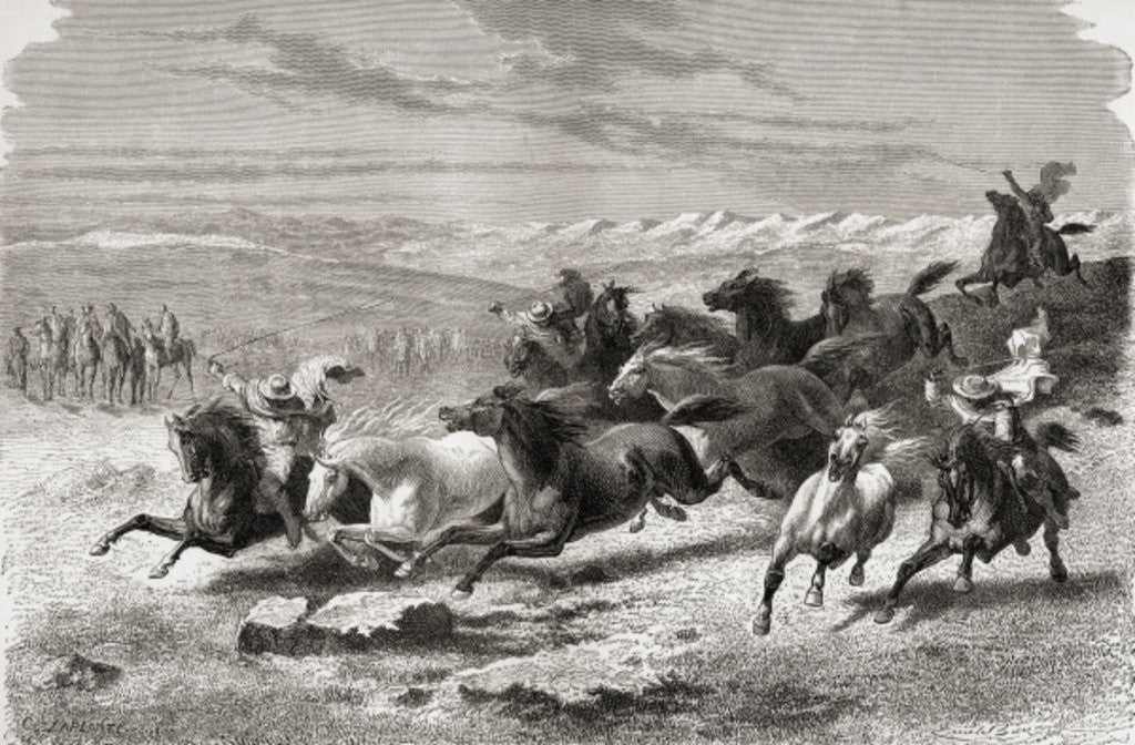 Detail of Argentinian gauchos rounding up wild horses by Emile Antoine Bayard