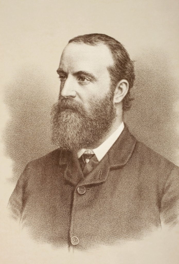 Detail of Charles Stewart Parnell by English School