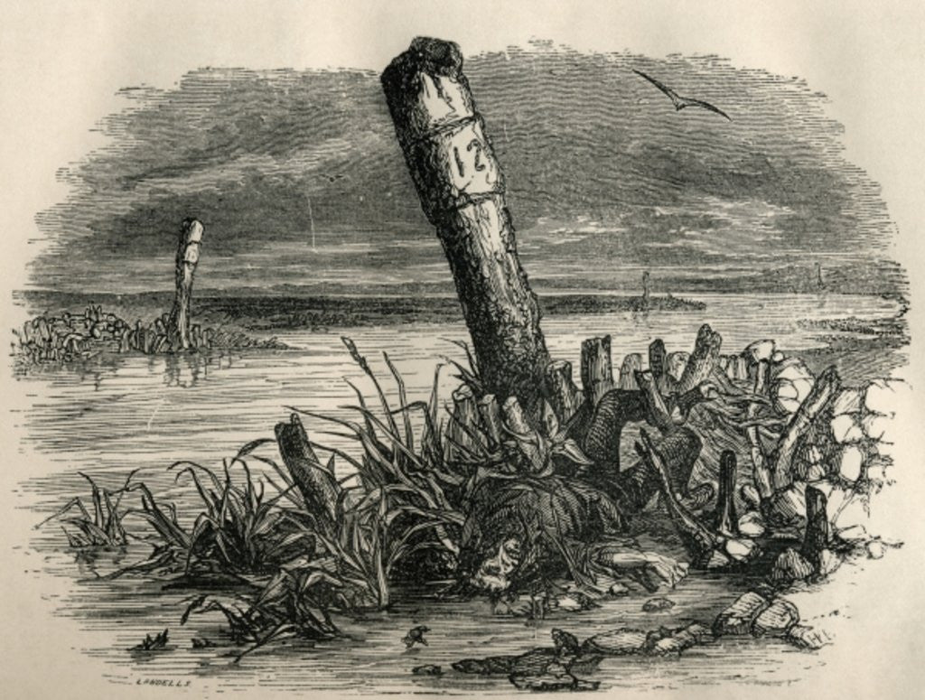 Detail of Daniel Quilp is washed ashore by English School