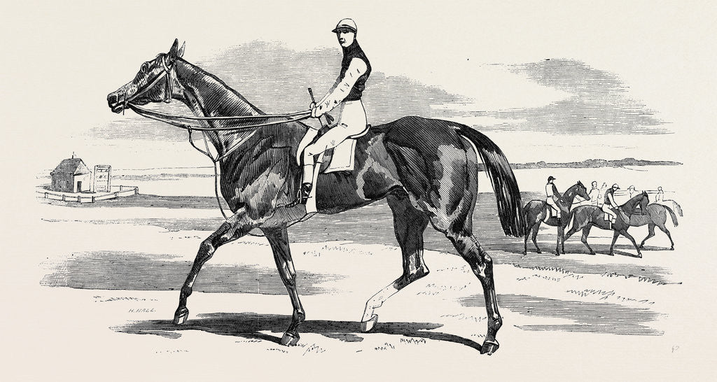 Detail of Odd Trick the Winner of the Cambridgeshire Stakes at Newmarket 1857 by Anonymous