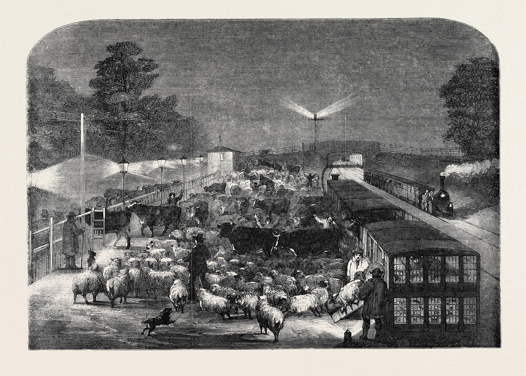 Detail of Christmas Cattle Arriving at Tottenham Station, Eastern Counties Railway by Anonymous