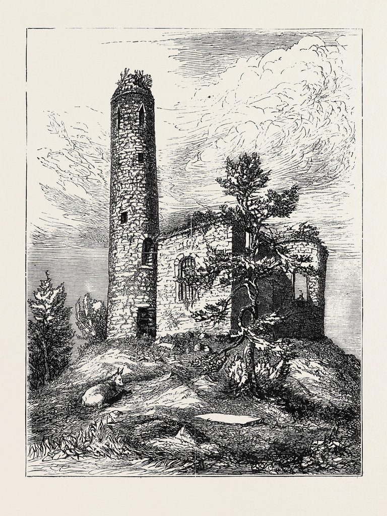 Detail of turlough round tower ireland by anonymous