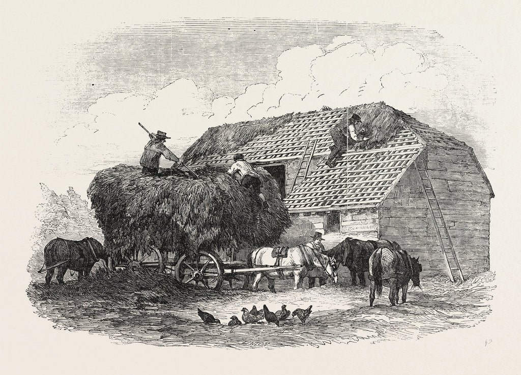 Detail of Agricultural Pictures: Thatching, 1846 by Anonymous