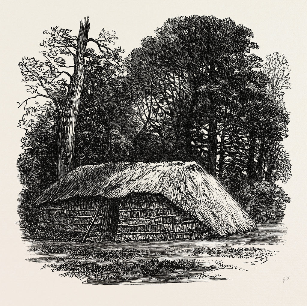 Detail of Facsimile of the Hut Built for Dr. Livingstone to Die in. 1874 by Anonymous