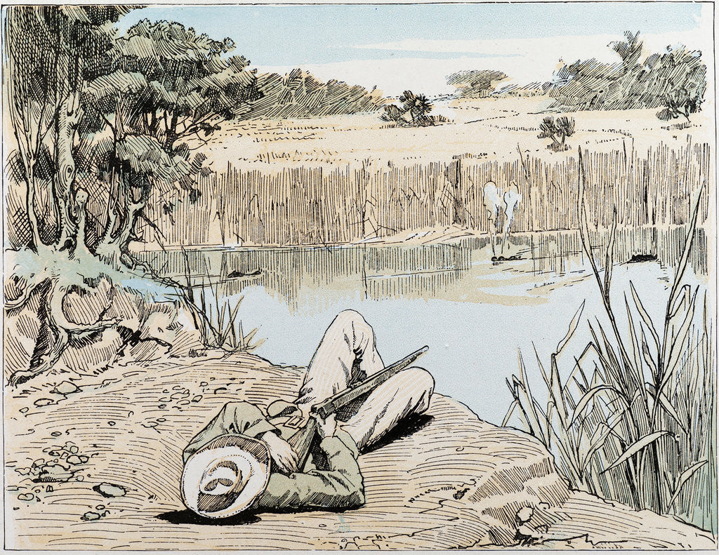 Detail of Hunting a Hippopotamus in South Africa by Anonymous