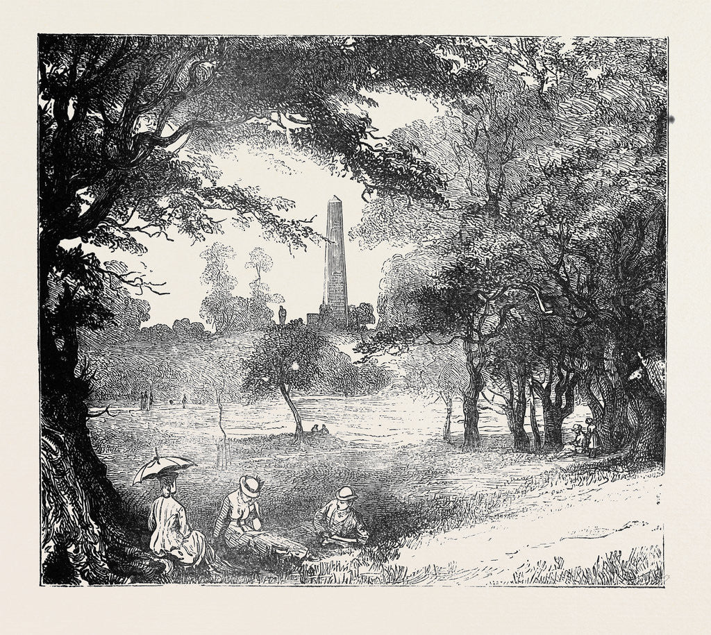 Detail of view in phoenix park dublin ireland by anonymous