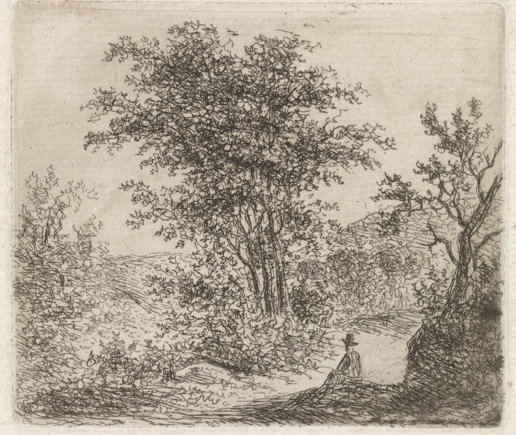 Detail of Wooded Landscape with seated figure by Johannes Christiaan Janson