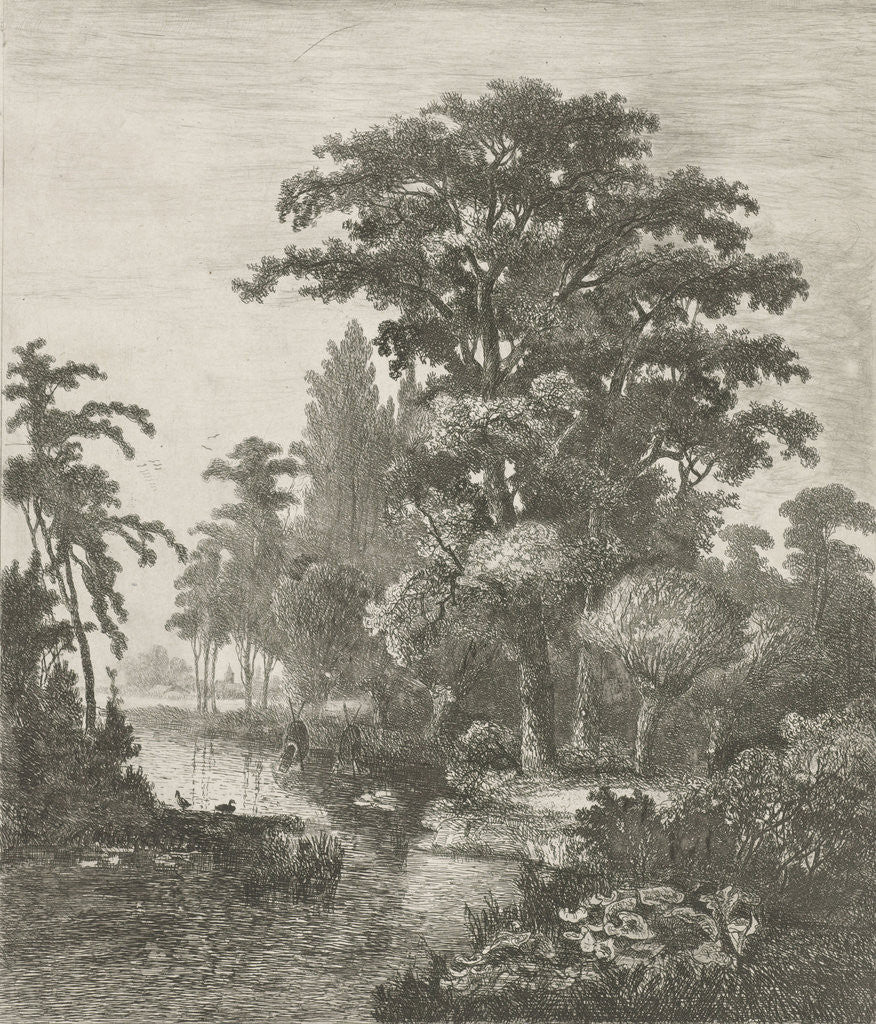 forest scene with two ducks nesting in a river by Hermanus Jan Hendrik van Rijkelijkhuysen