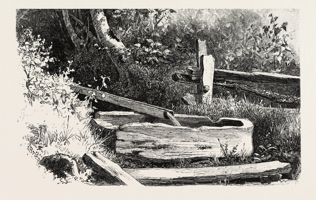 Detail of French Canadian Life, Wayside Watering Trough, Canada by Anonymous