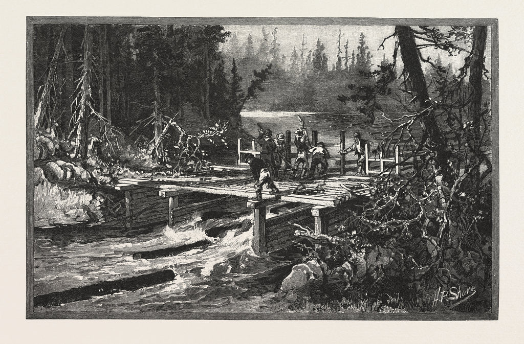 Detail of Dam on Tuque Creek, Lumbering, Canada by Anonymous